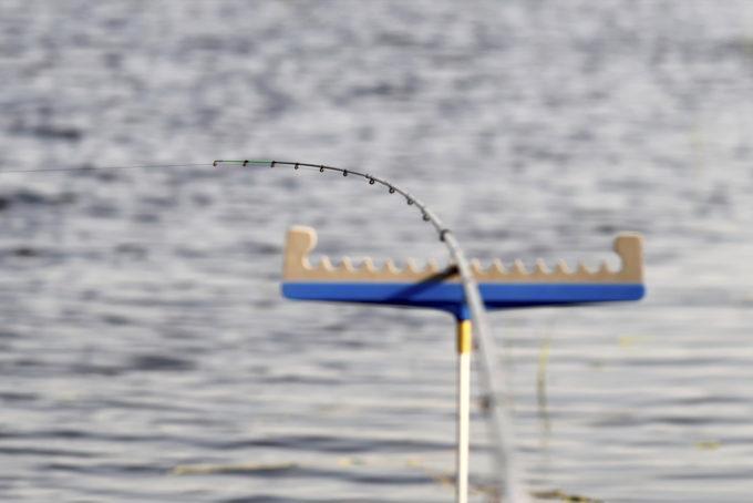Что такое фидер для рыбалки и подробно об  оснастке