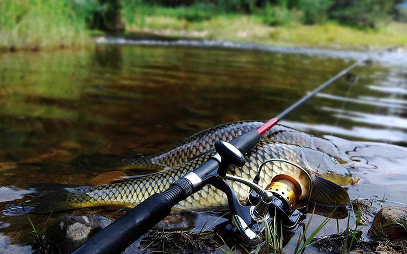 Удилища для рыбалки фото 1