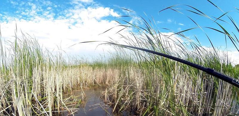 Боковой кивок для летней рыбалки фото 1