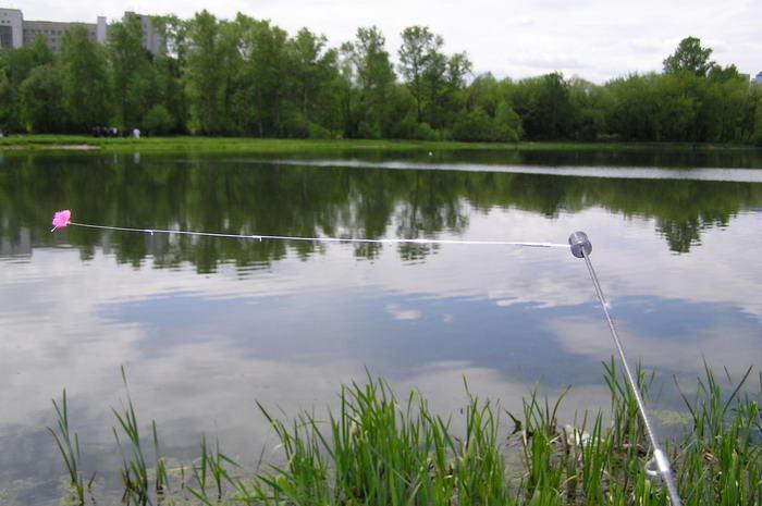 Боковой кивок для летней рыбалки фото 2