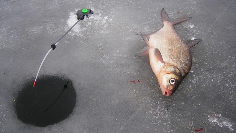 Рыболовная снасть балда фото 4