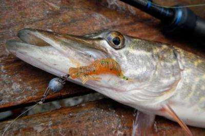 Силиконовые приманки на щуку – широкие возможности для рыбалки
