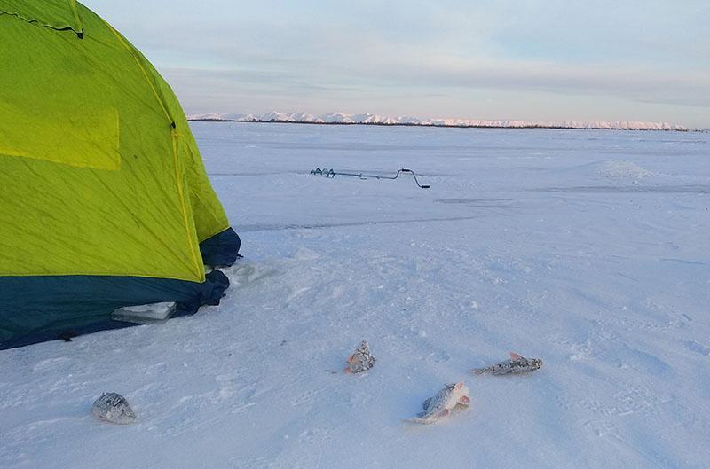 Косынка для зимней рыбалки фото 2