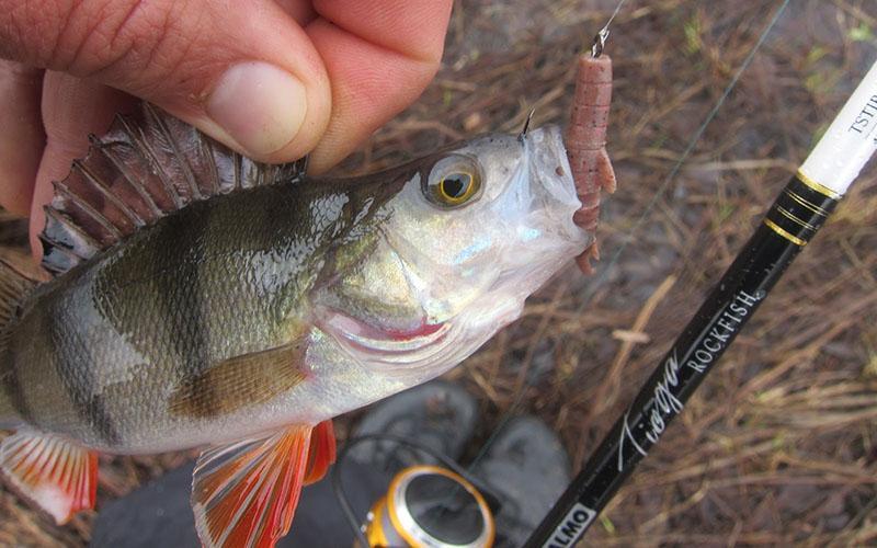 поводки для рыбалки фото 12