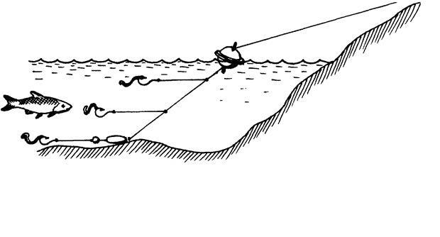 ловля плотвы фото 1