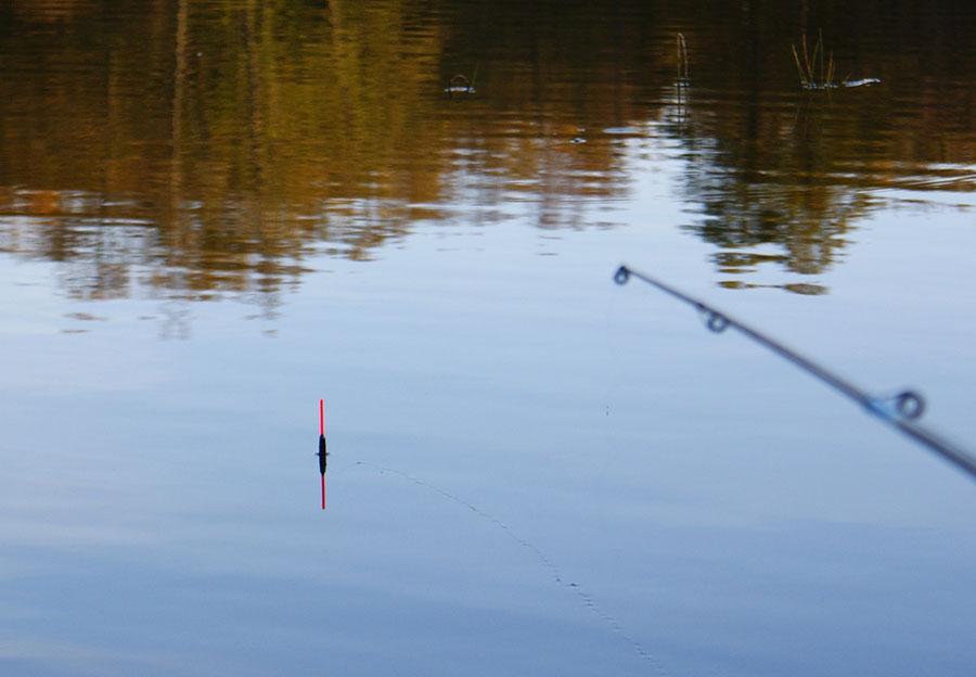 ловля плотвы фото 3