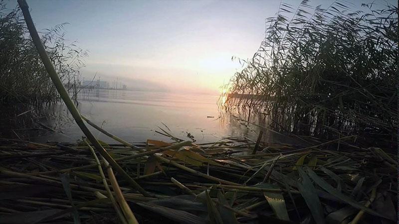 ловля плотвы фото 9