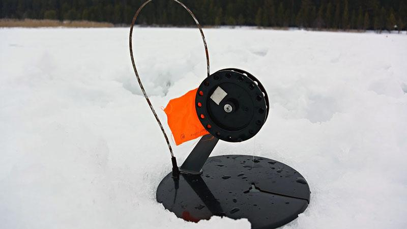 ловля щуки зимой на жерлицы фото 3