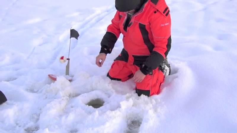 ловля щуки зимой на жерлицы фото 8