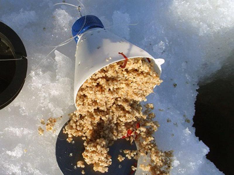 ловля леща зимой фото 6
