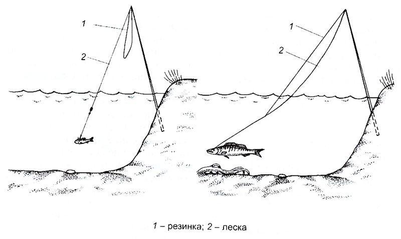 Рыбалка на жерлицы фото 2