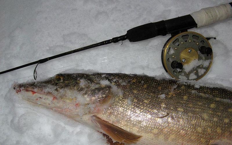 катушки для зимней рыбалки фото 2