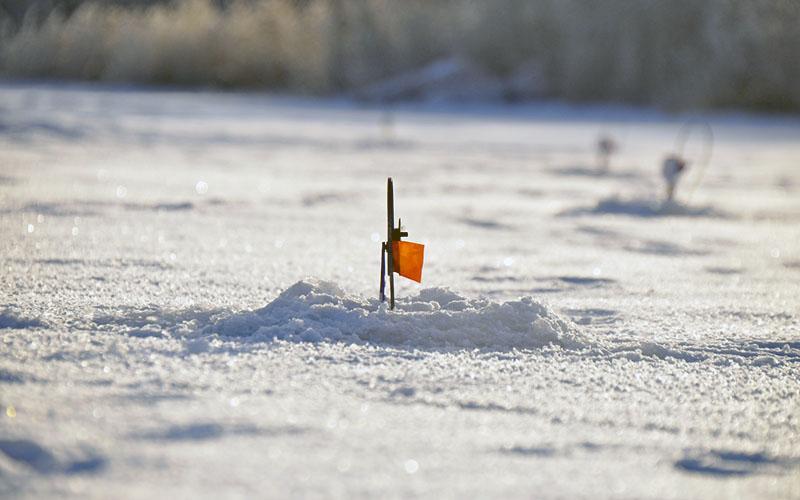 ловля щуки зимой на флажки фото 4