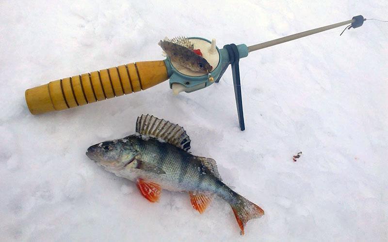 зимняя рыбалка на мормышку фото 1