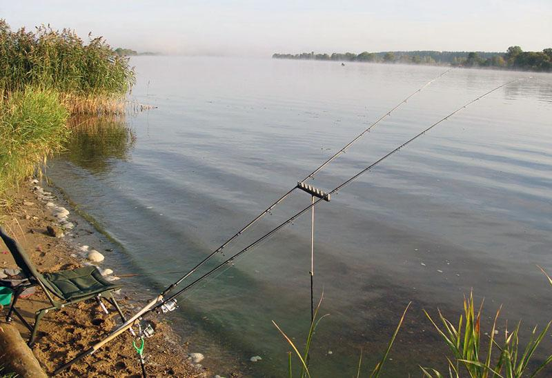 фидерная оснастка для ловли на течении фото 1