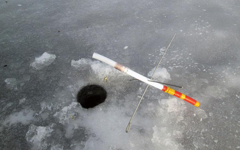 ловля форели на жерлицы зимой фото 3