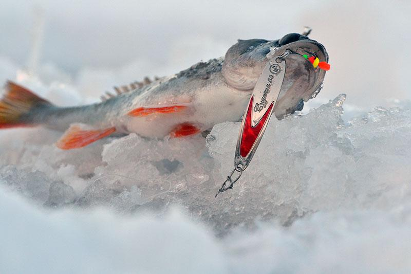 окуневые блесны для зимней рыбалки фото 2
