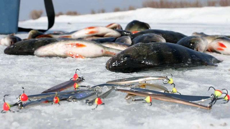 окуневые блесны для зимней рыбалки фото 3