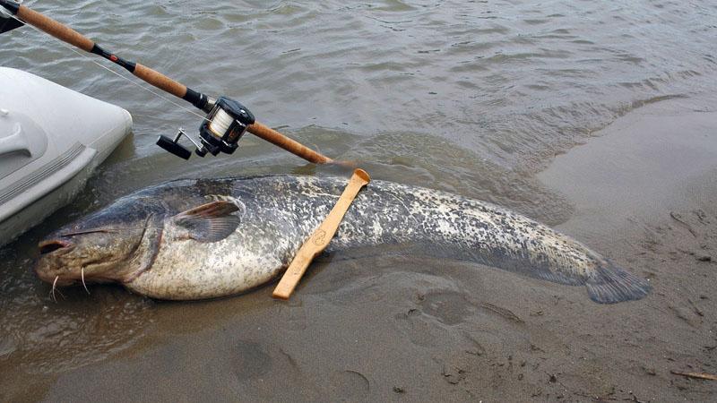 снасти для рыбалки фото 12