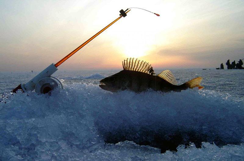 зимняя рыбалка фото 11