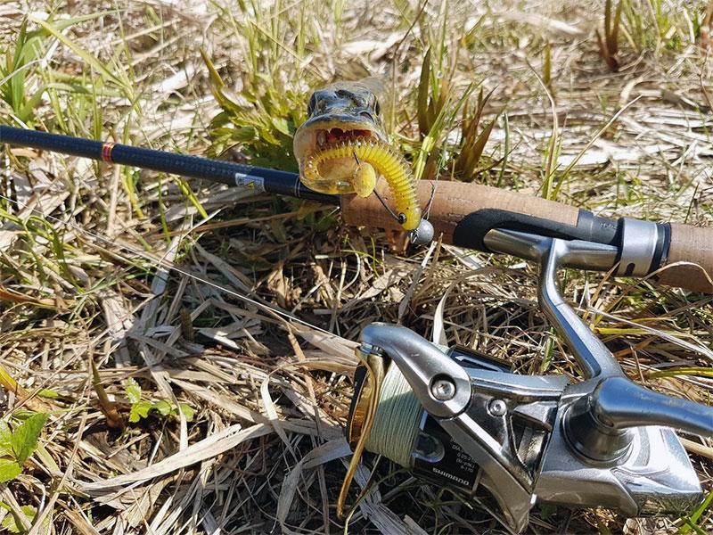 ловля щуки фото 3