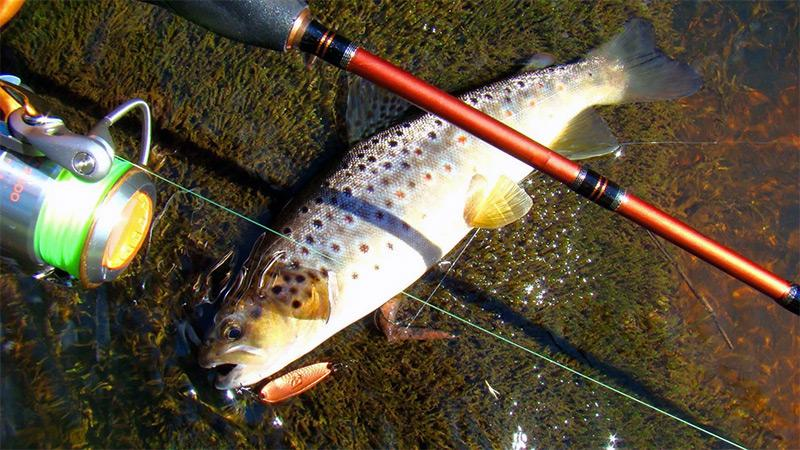 рыбалка на спиннинг фото 2