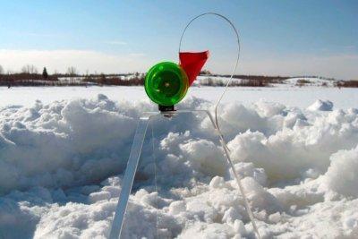 Как правильно выбрать зимнюю жерлицу для успешной рыбалки? Действенные советы