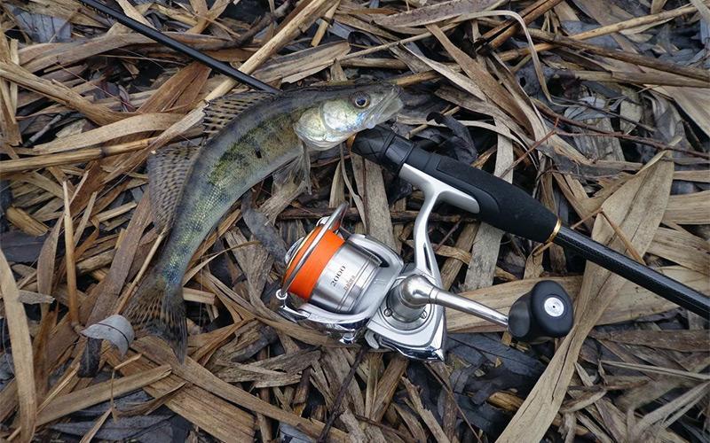 рыбалка на спиннинг весной фото 1