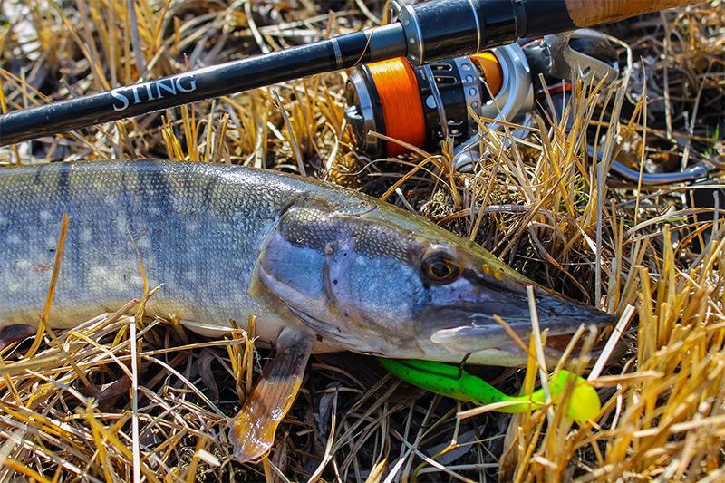 рыбалка на спиннинг весной фото 2