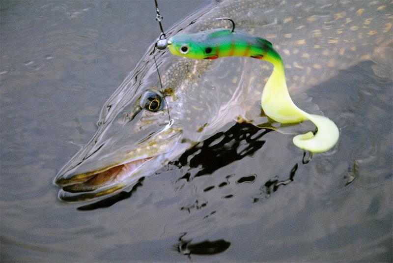 рыбалка на спиннинг весной фото 7