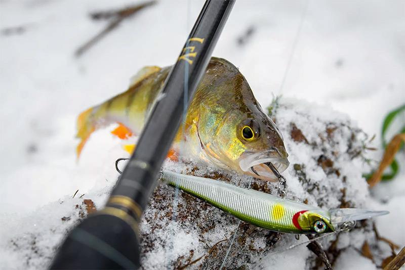 снасти для зимней рыбалки фото 5