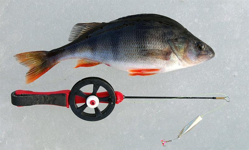 снасти для зимней рыбалки фото 7