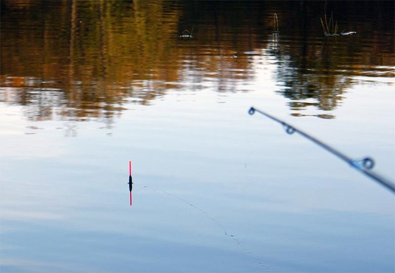 ловля леща фото 3
