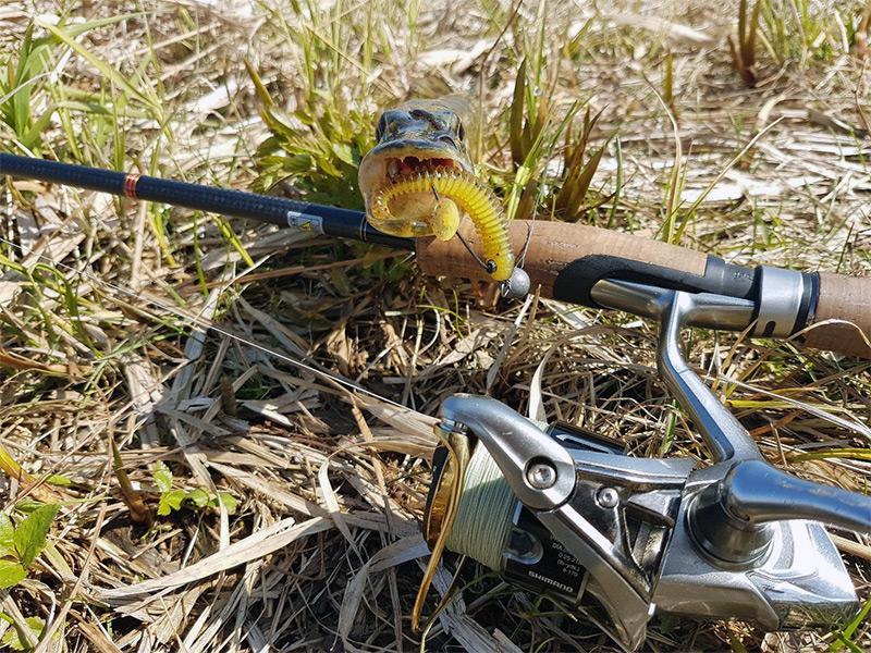 Грамотная ловля щуки на джиг: от подбора приманки до тактики вываживания