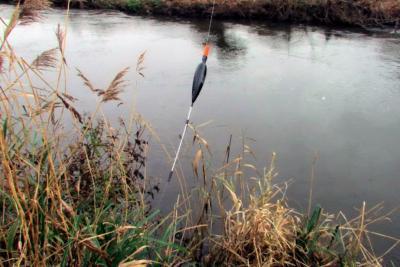 Метод ловли в проводку. Какую рыбу можно поймать, как собрать оснастку?