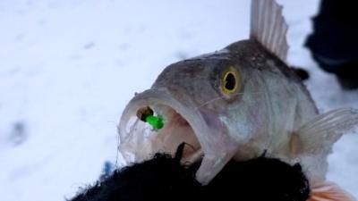 Что такое мормышка гвоздекубик, как сделать ее своими руками и использовать в рыбной ловле?