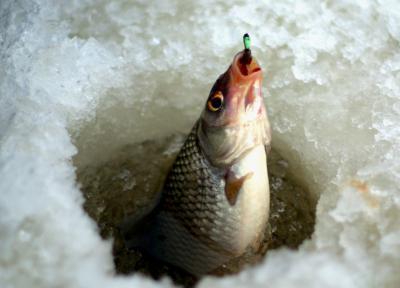 Рыбалка на плотву по первому льду: подробное руководство для успешной ловли