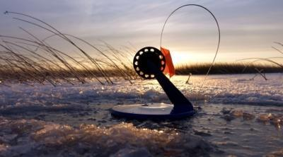 Всё, что нужно знать рыболову о том, сколько жерлиц на одного человека можно ставить по закону