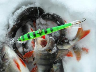 Ловля рыбы на балансир «Черная смерть» Герасимова. Как выбрать снасть?
